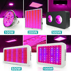 100W 200W 500W 600W 1000W LED Grow Light Full Spectrum for Indoor Plants Lamp