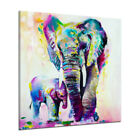 DIY Animal Paint By Number Kit Acrylic Oil Painting On Canvas Art Home Decor