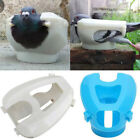 Plastic Racing Pigeon Holder Easy Bird Fixed Frame Rack Medicine Feeder Lig