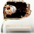 Wall Stickers Eagle Bird Deathers Mouth  Bedroom Girls Boys Room Kids F872