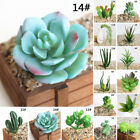 1* Mini Artificial Plastic Succulent Plant Cactus Echeveria Flower Home Decor