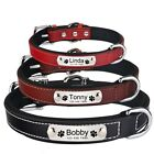 Leather Personalised Dog Collar Pet Custom Engraved Name ID Tags Soft Padded S-L
