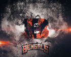 Cincinnati Bengals' Football Poster Paper 24x36 $11.99 USD on eBay