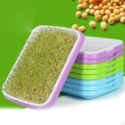 Hydroponics Seed Germination Tray Seedling Tray Sprout Plate Grow Nursery Pots T