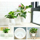 Self-watering Plant Pot Wall Hanging Plastic Planter Bonsai Home Garden Decor