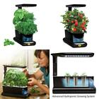 Miracle-Gro AeroGarden Sprout LED with Gourmet Herb Seed Pod Kit Plant Grower
