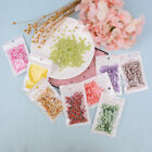 10g Fruit slice clay sprinkles for filler supplies fruit mud decoration for k jx image
