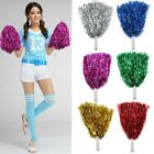 2Pcs Cheerleader Pom Poms Waver Fancy Dress Costume Dance Group Theater  New