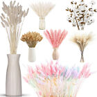 Natural Dried Pampas Grass Reed Rabbit Bunny Tail Grass Flower Bunch Home Decor