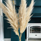 Natural Dried Pampas Grass Reed Flower Bunch Wedding Bouquet Party Home Decor Uk