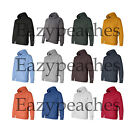 CHAMPION NEW MENS Eco PULLOVER Hooded Sweatshirt Hoodie Jumper Size S-XL 2XL 3XL