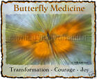 Butterfly Medicine Totem Spirit Guide Insect Transformation Joy Courage T-Shirt