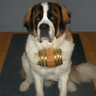 Saint Bernard Dog Collar Barrel - 1 Liter - Pet Accessories for Liquor Lovers