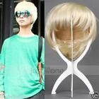 HOT Fashion Style Cool Handsome Short Straight Boys Men's Cosplay Hair Full Wigs
