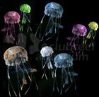 Jellyfish Eshopps Reef Aquarium Floating/Glow Ornament Assorted Color & Sizes