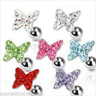 """1 PC 16g 1/4"""" 8mm CZ Paved Butterfly Ear Cartilage Tragus Earring Stud"""