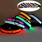 Dog Pet LED Flashing Lighting Nylon Night Safety Glow Collar with Leash Clip