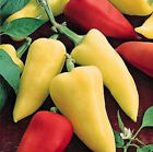 Romanian Sweet Pepper-Excellent for frying or stuffing! - very sweet - Free Ship