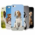 HEAD CASE POPULAR DOG BREEDS TPU GEL BACK CASE COVER FOR APPLE iPHONE 5
