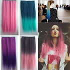 High Quality Girl lady Rainbow Straight Synthetic Clip Hair Extensions WB032