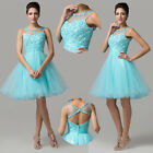 Short Tulle Evening Party Ball Gown Prom Cocktail Debut Club Dresses PINK BLUE++