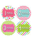 Baby Girl Monthly Baby Stickers Style #408