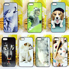 New Style Animal Pattern Phone Hard Skin Cover Case for iPhone 5/5s Cute Fashion