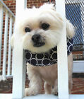 Puppy Bumpers Keeps dogs from getting thru fence rails! Blue Classic- 2 Sizes