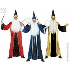 Mens Fantasy Wizard Costume Outfit for Magic School Fancy Dress