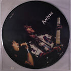 ANTHRAX: Limited Edition Interview LP (UK, pic disc, PVC sleeve) Metal
