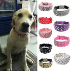 Pet Dog Puppy Cat Collar PU Leather Spiked Bling Rivet Studded Neck Strap Buckle