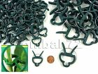 SMALL or LARGE Plastic Garden Plant to Cane Support CLIPS Sprung Spring Ties NEW