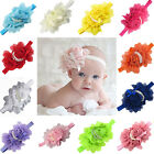 New  Baby Girl Toddler Elastic Rose Flower Bow Pearl Headband Hairband 13 Colour