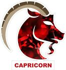 Capricorn Decal / Sticker