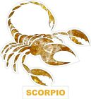 Scorpio Decal / Sticker
