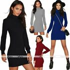 Womens Warm Knit Long Sleeve High Collar Slim Bodycon Mini Dress