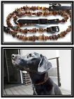 Raw- unpolished Baltic amber collars for pets: dogs and cats