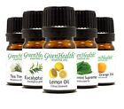 5ml Essential Oils - Free Shipping - Pure & All Nature - Backed by GC/MS reports