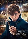 Fantastic Beasts & Where To Find Them A4 & A3 posters - Newt Scamander - Opt 6