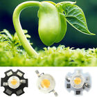 Lot 1w 3w White Full Spectrum 380~780nm LED Bead Lamp Bulb Light For Plant Grow