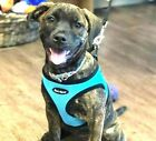 "Aqua Dog Harness - Step In Mesh EZ Wrap No Choke - Up to 29"" Chest - Bark Appeal"