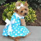 2 Piece Dog HARNESS DRESS & LEASH - Turquoise Gingham - Doggie Design