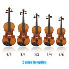 ammoon Violin Natural Acoustic Solid Wood for Beginner+Case+Rosin New US G7C3