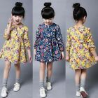 Toddler Kids Girl Long Sleeve Floral Dress Casual Party Birthday Tutu Dress Gift