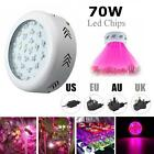 300W LED Grow Light Lamp Full Spectrum Panel Veg Flower for Medical Indoor Plant
