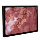 Cora Niele's ' Sepia Leaves 2' Gallery Wrapped Floater-framed Canvas