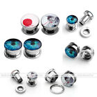 2 Pairs Gauges Steel Screw Tunnels Ear Stud Plugs Punk Expander Stretcher Gift
