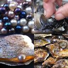 1/5/10/25/100Pc Natural South Sea Oyster Shell Pearl Hot Lovely Present Gift Lot