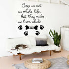 Dog Wall Decals Grooming Salon Decal Vinyl Stickers Quote Dog Decor Art MN137