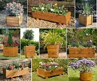 Tom Chambers Trough Planters - Wooden Garden Container Patio Planters
